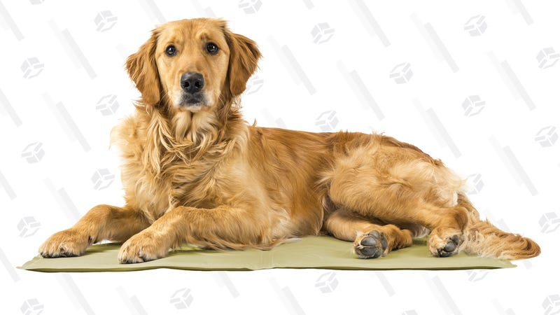 FurHaven Pupicicle Cooling Gel Mat | Woot