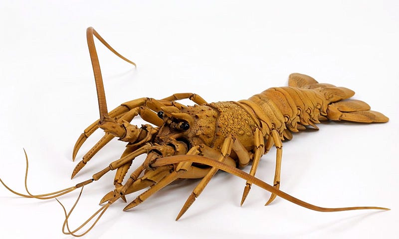 Illustration for article titled This Is Not A Lobster