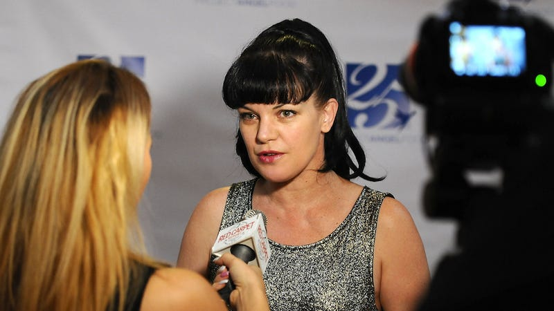 Illustration for article titled Why Does Pauley Perrette Keep Getting Attacked by 'Homeless People'?