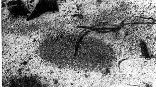 Illustration for article titled Astrolite: The Liquid Land Mine