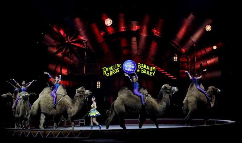 Illustration for article titled Ringling Bros. circus to close after 146 years