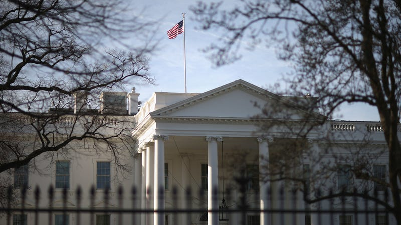 White House infested with cockroaches, mice, ants