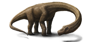 Illustration for article titled Scientists Have Discovered (Maybe) the Biggest Dinosaur Ever