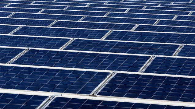 Even Under a Coal-Loving Leader, Australia Is Leading the Charge for Renewables