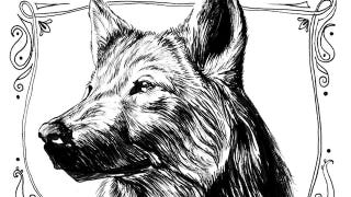 Illustration for article titled Have you seen this Direwolf? Arya Stark's Lost Dog Poster