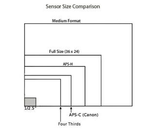 Illustration for article titled Debate: What's the Best Sensor Size