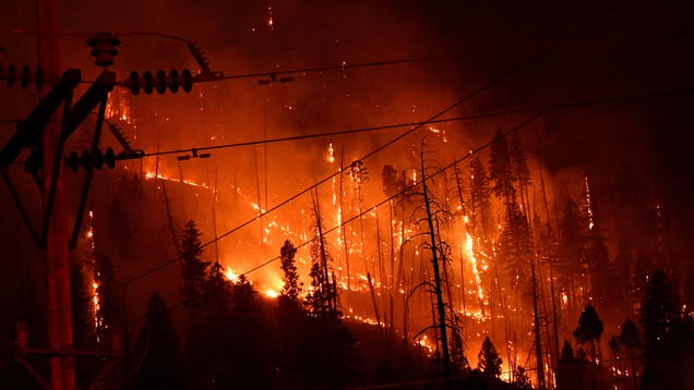 Here Are the 5 Major Regions Literally on Fire Right Now