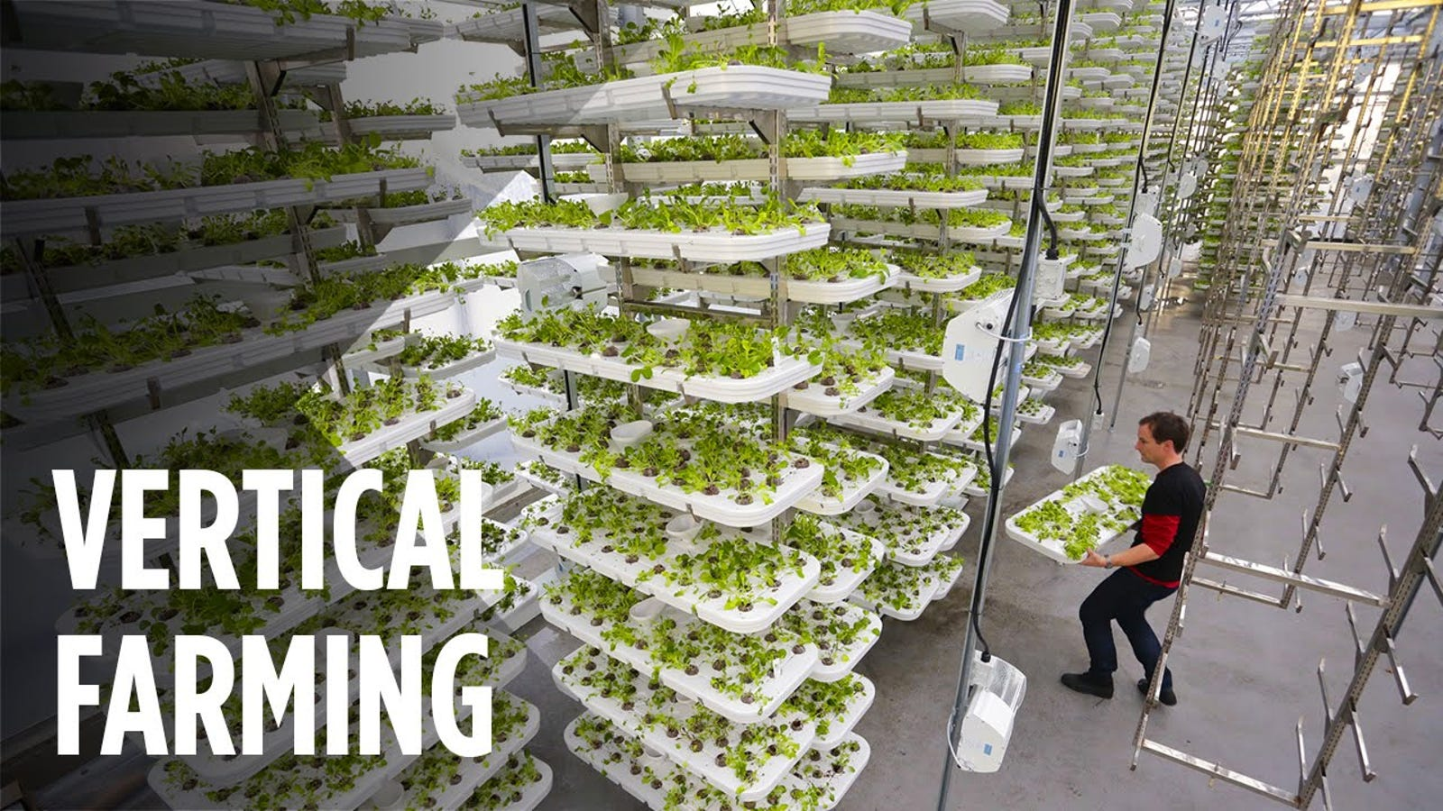The World's Largest Vertical Farm Is Being Built in New Jersey