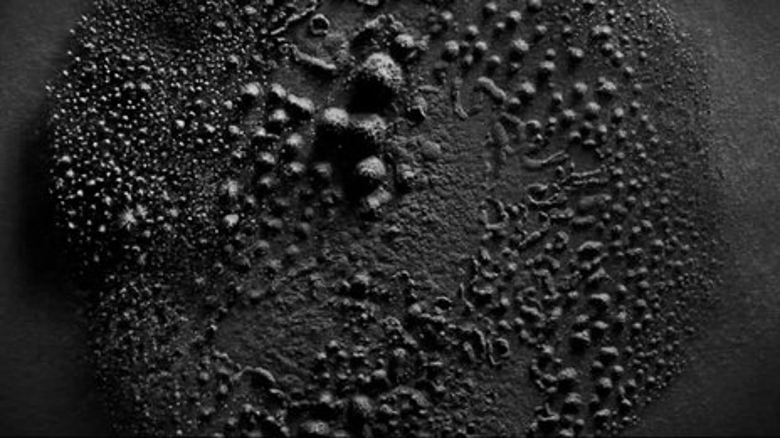 La fascinante danza de las partículas de polvo sobre un altavoz