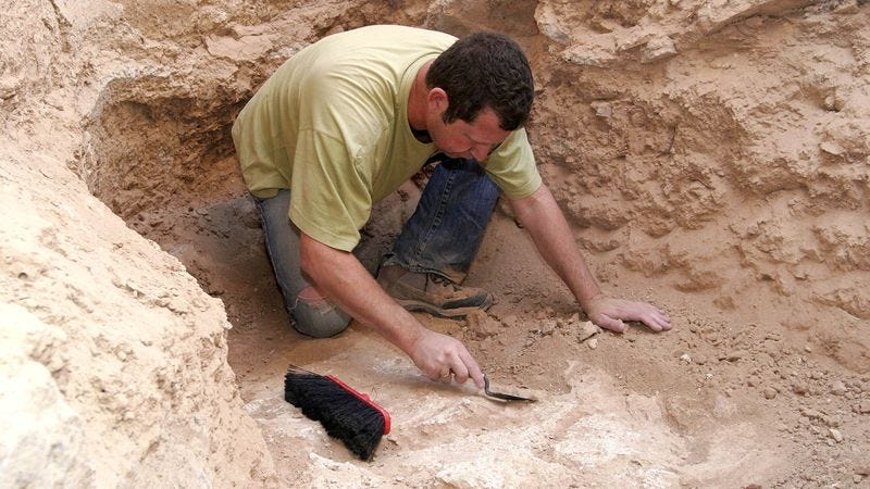 Illustration for article titled Archaeologists Uncover Greek Amphitheater Where First Prick Saved Seats