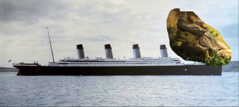 Illustration for article titled The OG Titanic.