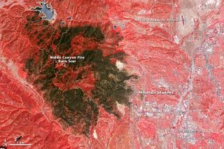 Illustration for article titled The Terrible Colorado Fire Scar Seen From Space