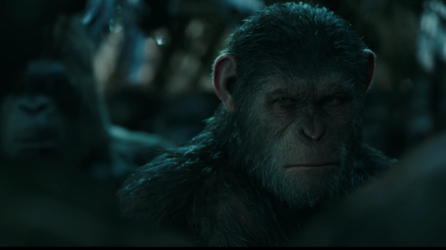 war for the planet of the apes is expanding its world beyond caesar