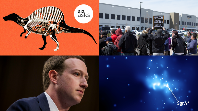 Misogyny at Microsoft, Farscape, and the New Airpods: Best Gizmodo Stories of the Week