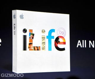 Illustration for article titled Apple Revamps iLife for '09: $79 for iPhoto Facial Recognition, Improved iMovie and More