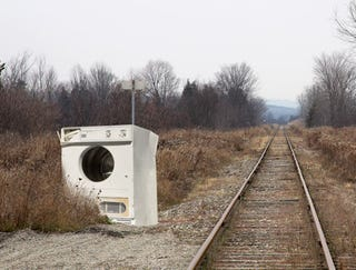 Illustration for article titled Old Dryer Abandoned By Train Tracks Now A Vital Part Of Ecosystem