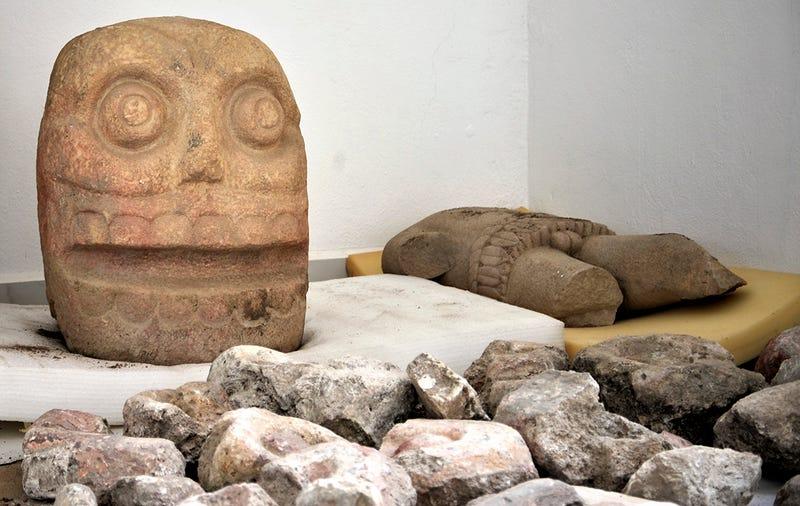 Uno de los cráneos hallados. Al fondo, la estatua de Xipe Topec