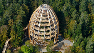 Illustration for article titled Germany's new 18-story Tree Top Walk is shaped like a giant egg