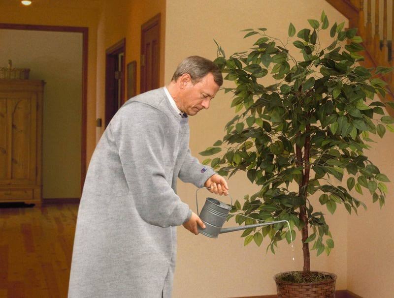 Illustration for article titled Chief Justice Roberts Putters Around House All Day In Gray Sweat Robe