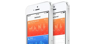 Illustration for article titled A Bug Hits HealthKit Right Before iOS 8 Launch (Updated)