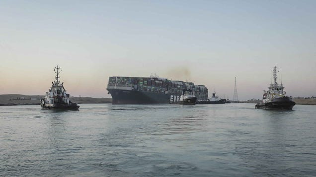 Hundreds of Thousands of Animals Got Stuck in the Suez Canal