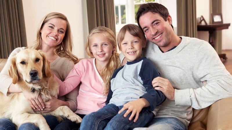 Illustration for article titled Dog Doesn't Consider Itself Part Of Family