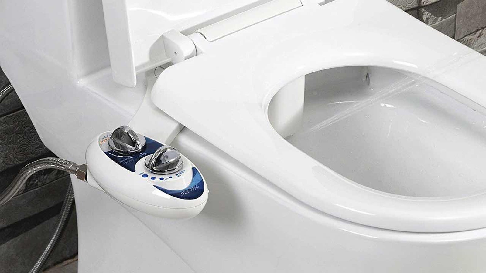 Sensational Amazon Bidet Pdpeps Interior Chair Design Pdpepsorg