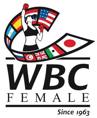 Illustration for article titled World Boxing Council makes mockery of women's bodies and choices.