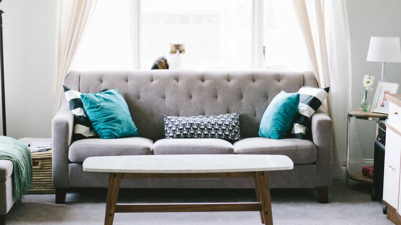 Fabulous Is Baking Soda The Best Way To Clean Your Couch Interior Design Ideas Philsoteloinfo