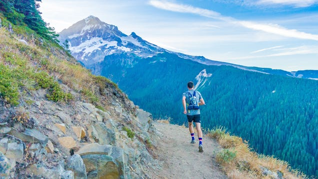 New Year, New You: The Gear You Need to Start Trail Running