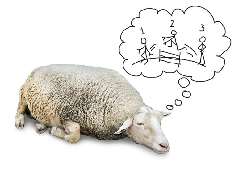 Illustration for article titled Counting Sheep Doesn't Actually Work, Just a Heads Up