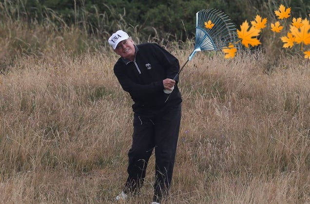 Finns Mock President Trump by Posting  Forest Raking  Photos Online