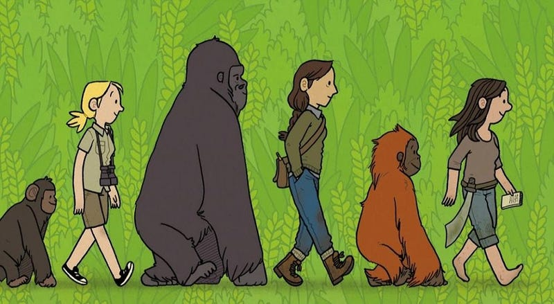 Illustration for article titled Primates shows us what it takes to make it as a scientist