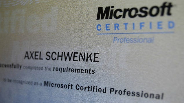 Should I get IT certified before I earn my bachelors?