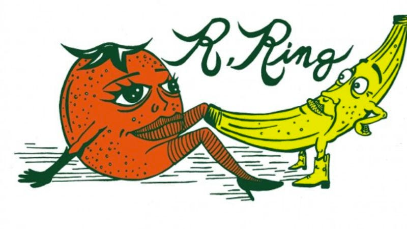 Illustration for article titled Breeders frontwoman Kelley Deal debuts her new band, R. Ring