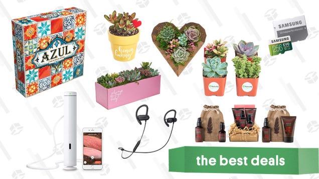 Monday s Best Deals: Succulents, Sous Vide, Samsung MicroSD, and More