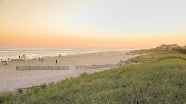 Rich Hamptons Residents Scared of  Violent Energy Releases  From Offshore Wind Farm Cable