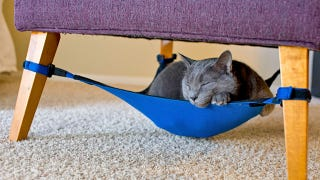 Illustration for article titled Under Chair Cat Hammock Keeps Fluffy off the Damn Furniture