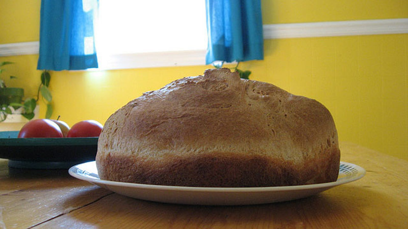 Bread At Room Temperature Not In The Fridge For Six Times Freshness