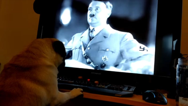 Illustration for article titled Condenan por un delito de odio a un youtuber que enseñó al perro de su novia a hacer el saludo nazi