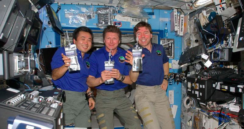 Illustration for article titled The ISS Crew Collects Russian Pee for Its Water Supply