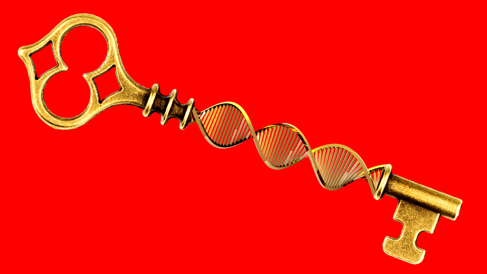Before You Take a Mail-In DNA Test, Brace Yourself for Family Secrets