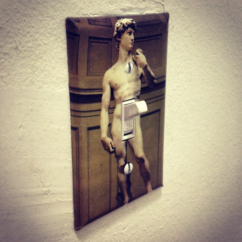 Illustration for article titled Just installed this world's best light switch cover...