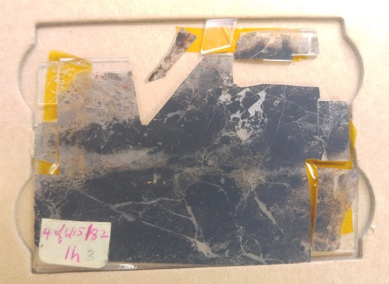 Discovered in 1982, this ancient rock contains traces of 3.5 billion-year old microbial life, according to new research. (Image: Courtesy of John Valley, UW-Madison)
