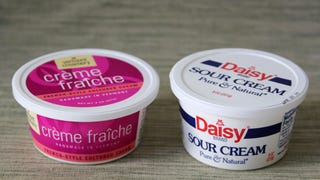 Illustration for article titled Sour Cream, Crema, Crème Fraîche: What's the Difference?