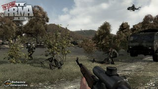 Illustration for article titled First ArmA II In-Game Screen Surfaces