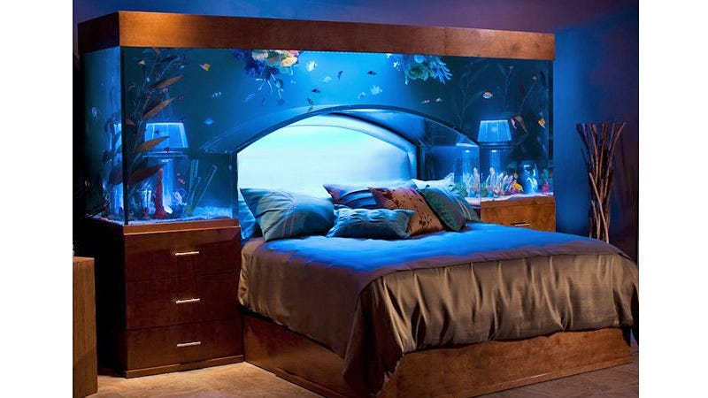 Nice Forget About The Race Car Or Canopy Bed You Dreamed About As A Child. This  Custom Made Aquarium Headboard Makes Your Boring Old Serta Setup Just About  The ... Good Looking
