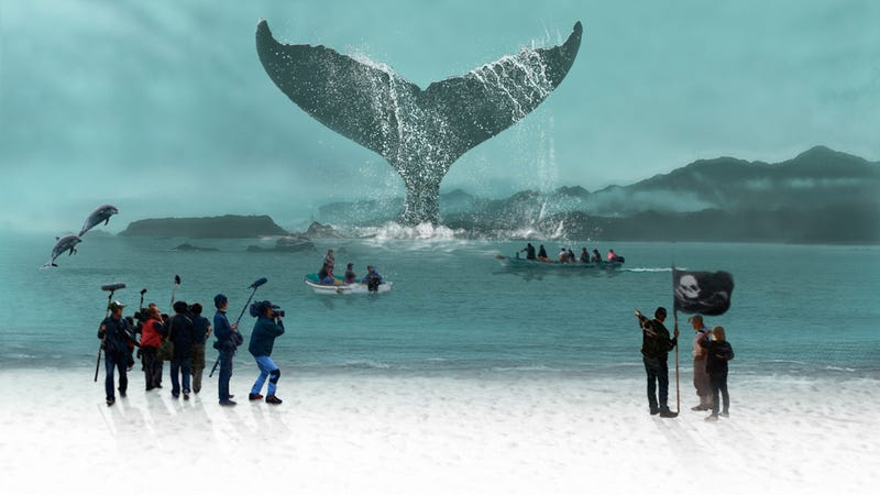 Illustration for article titled New Documentary A Whale of a Tale Reexamines the Debate Over Japanese Dolphin Hunts