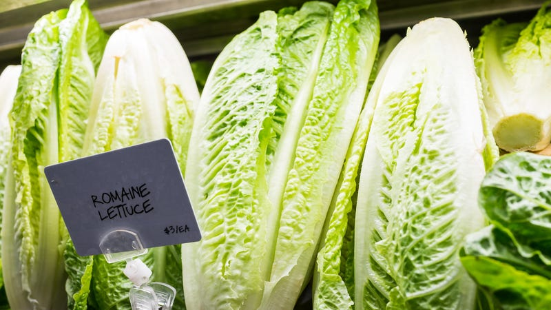 Illustration for article titled FDA and CDC say some romaine lettuce safe to eat again