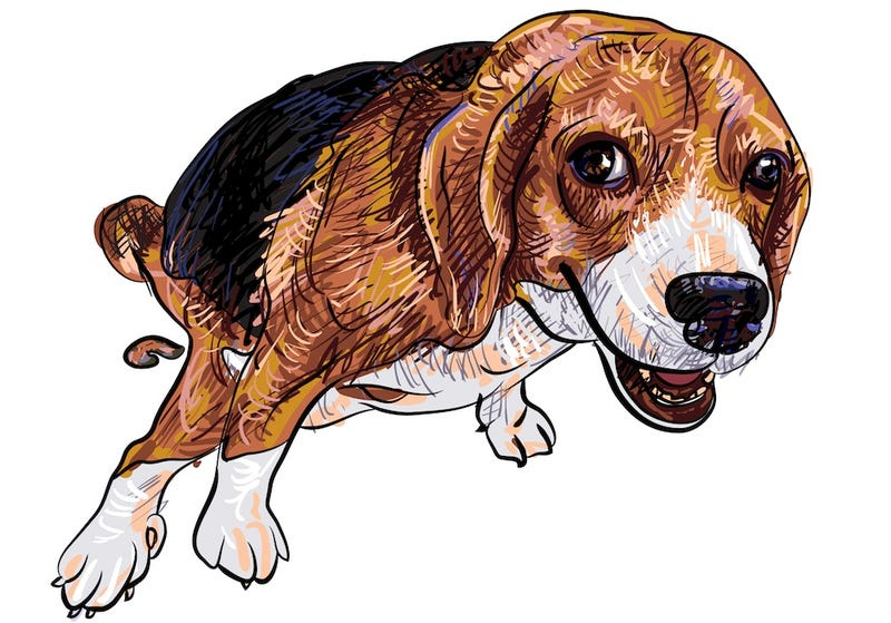 Illustration for article titled The Greatest Menace to Public Health Is ... Dog Poop